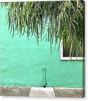 Green Wall With Leaves Canvas Print