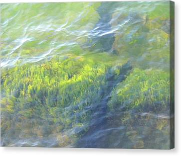Canvas Print featuring the photograph Green Water by Beth Akerman