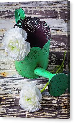 Green Watering Can And Ranunculus Canvas Print by Garry Gay