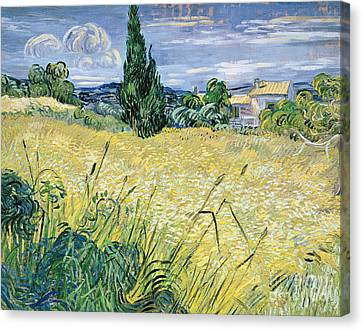 Green Wheatfield With Cypress Canvas Print by Vincent van Gogh