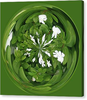 Canvas Print featuring the photograph Green-white Orb by Bill Barber