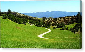 Greener Pastures Canvas Print by Gary Brandes