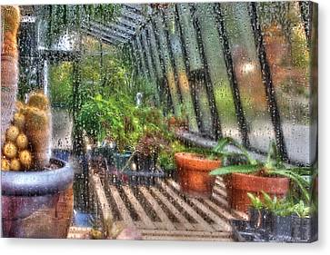 Greenhouse - In A Greenhouse Window  Canvas Print by Mike Savad