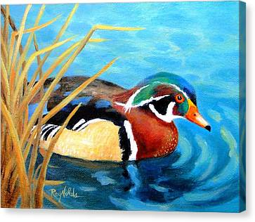 Greeting  The Morning  Wood Duck Canvas Print by Carol Reynolds