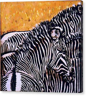 Grevy Colt Canvas Print by Dy Witt