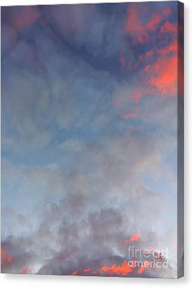 Canvas Print featuring the photograph Pink Flecked Sky by Linda Hollis