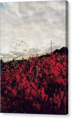 Canvas Print featuring the photograph Grey And Red by Sergey and Svetlana Nassyrov