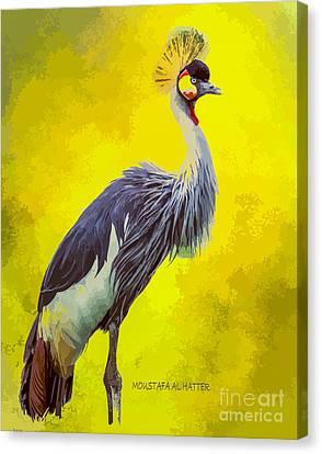 Grey Crowned Crane Canvas Print