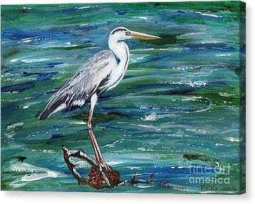 Grey Heron Of Cornwall -painting Canvas Print by Veronica Rickard
