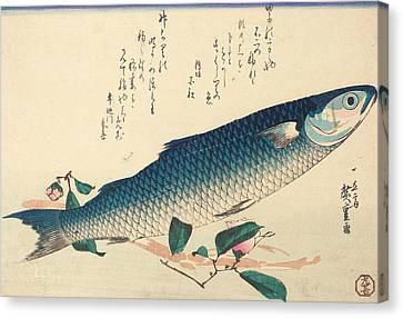 Grey Mullet, Camellia And Udo Canvas Print by Hiroshige
