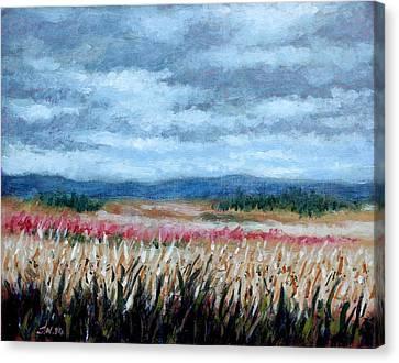 Grey Sky Canvas Print by John  Nolan