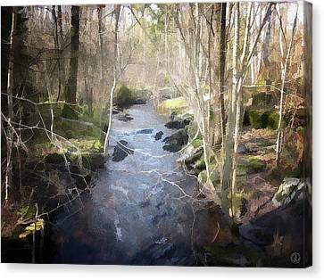 Grey Spring Canvas Print by Gun Legler