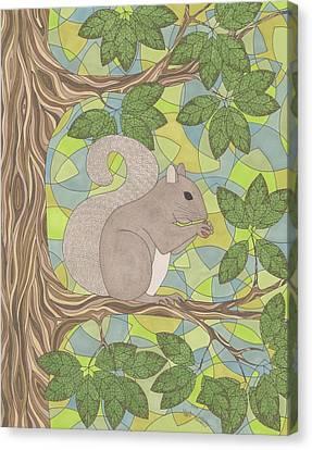 Grey Squirrel Canvas Print by Pamela Schiermeyer