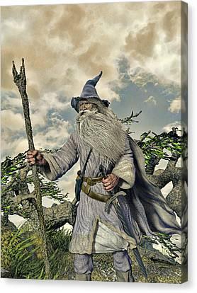 Grey Wizard II Canvas Print by Dave Luebbert