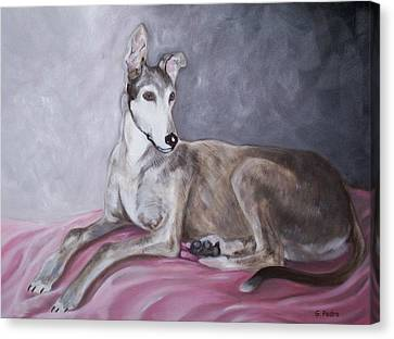 Rescued Greyhound Canvas Print - Greyhound At Rest by George Pedro