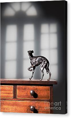 Greyhound Figure In Bronze Canvas Print by Amanda Elwell