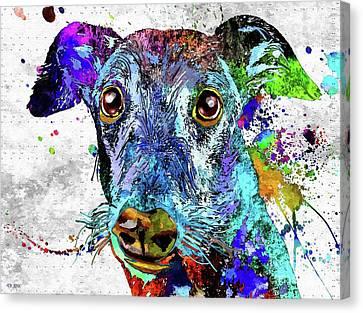 Greyhound Canvas Print - Greyhound Grunge by Daniel Janda