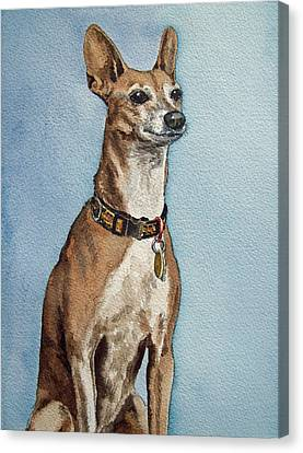 Greyhound Commission Painting By Irina Sztukowski Canvas Print by Irina Sztukowski
