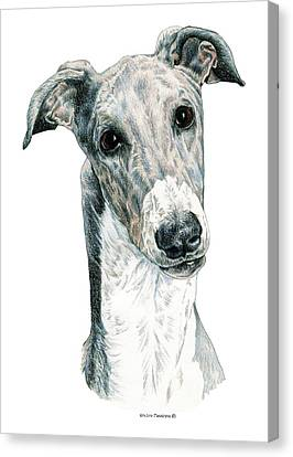 Greyhound Canvas Print by Kathleen Sepulveda