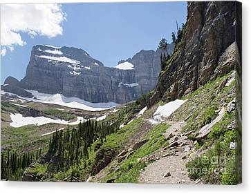 Grinnell Glacier Trail - Glacier National Park Canvas Print