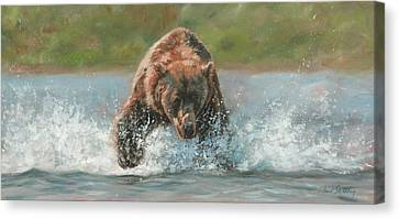 Grizzly Charge Canvas Print by David Stribbling