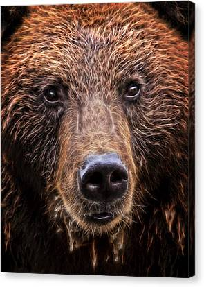 Grizzly Close Canvas Print by Daniel Hagerman