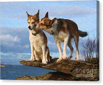 Grooming Dogs Canvas Print