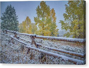 Snow-covered Landscape Canvas Print - Gros Ventre Grand Teton Fall Snowfall Fence by Scott McGuire
