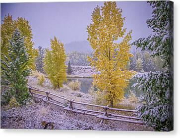 Snow-covered Landscape Canvas Print - Gros Ventre Grand Teton Fall Snowfall by Scott McGuire