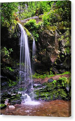 Grotto Falls Canvas Print by Thomas Schoeller