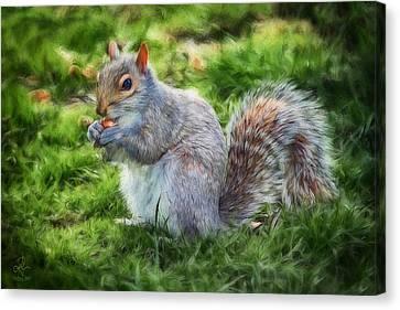Canvas Print featuring the photograph Ground Squirrel by Pennie  McCracken