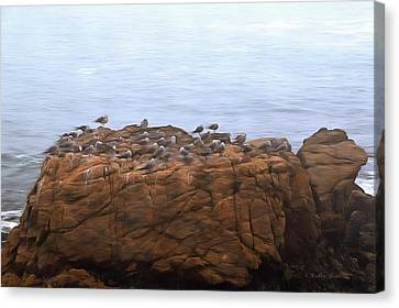 Foggy Day Canvas Print - Grounded Due To Fog Cambria California Painting by Barbra Snyder