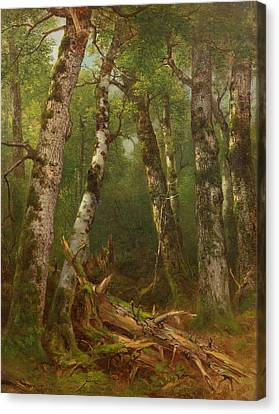 Group Of Trees Canvas Print by Asher Brown Durand