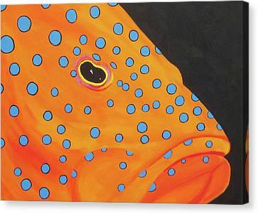 Grouper Head Canvas Print