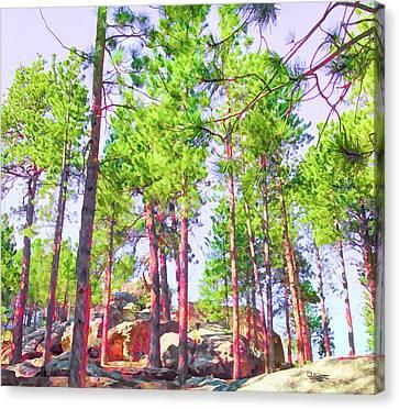 Grove Matrix Canvas Print
