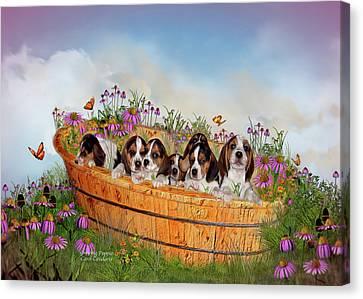 Growing Puppies Canvas Print by Carol Cavalaris
