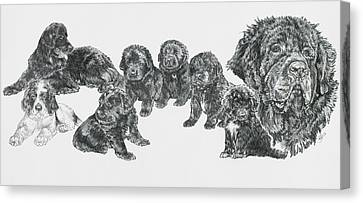 Working Dog Canvas Print - Growing Up Newfoundland by Barbara Keith