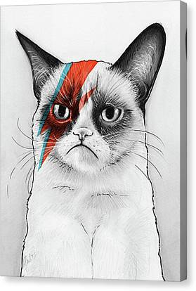 Mix Media Canvas Print - Grumpy Cat As David Bowie by Olga Shvartsur