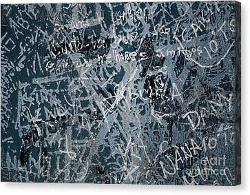 Grunge Background I Canvas Print by Carlos Caetano