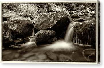 Gsmnp Roaring Fork - Sepia With Border Canvas Print by Stephen Stookey