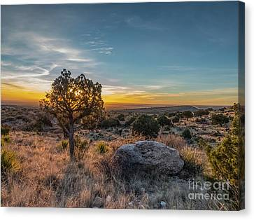 Guadalupe Mountains Sunrise Canvas Print