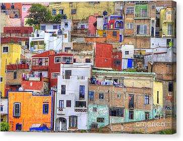 Guanajuato Jumble Canvas Print by Juli Scalzi