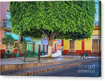 Pueblo Architecture Canvas Print - Guanajuato Small Park by Inge Johnsson