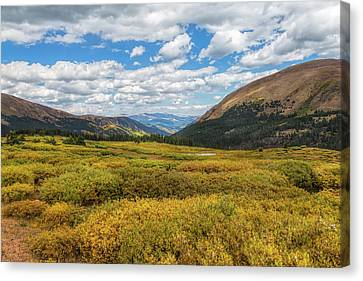Canvas Print featuring the photograph Guanella Pass by John M Bailey