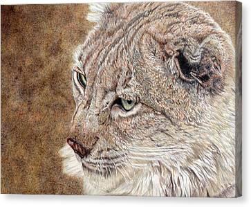 Guardian Canvas Print by Joanne Stevens