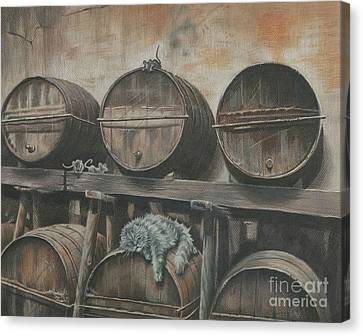 Guardian Of The Wine Cellar Canvas Print