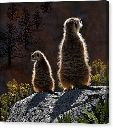Guarding Meerkats Canvas Print by Thanh Thuy Nguyen