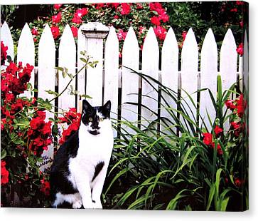 Guarding The Rose Garden Canvas Print by Angela Davies