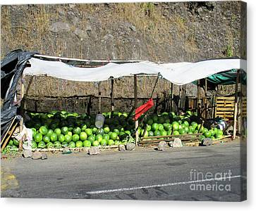 Guatemala Stand 2 Canvas Print by Randall Weidner