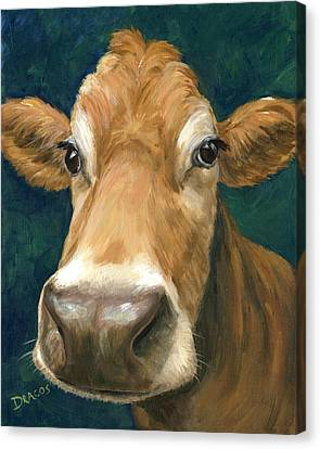 Guernsey Cow On Teal Canvas Print by Dottie Dracos